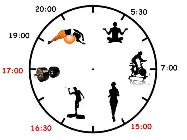 В какое время суток лучше заниматься спортом на эллипсоиде